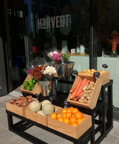 Harvest Market and Grocery